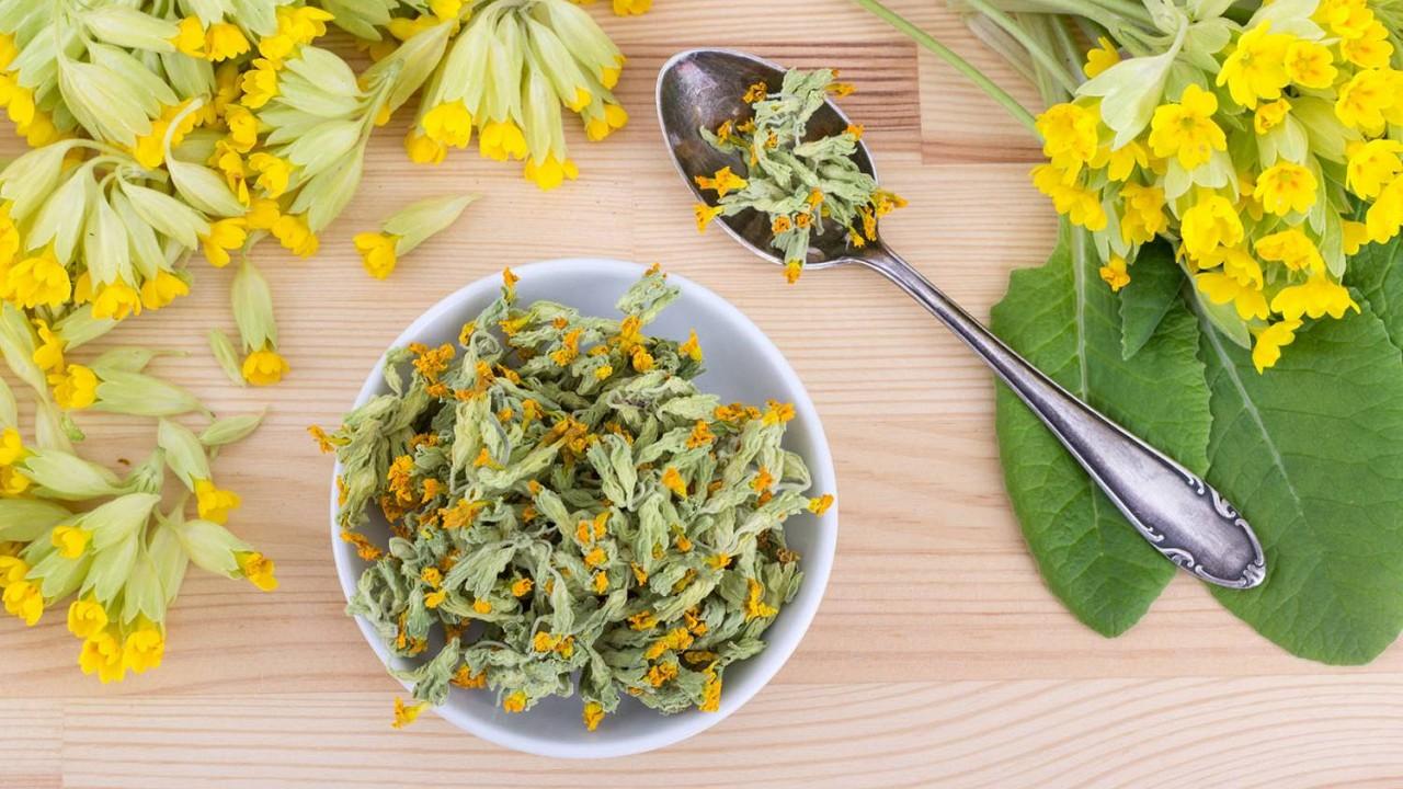 Prvosienkový čaj ako liek na depresiu